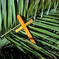 palm-sunday-usa1